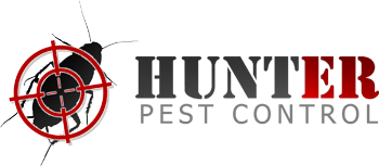HUNTER - Pest Control - London, Birmingham, Coventry